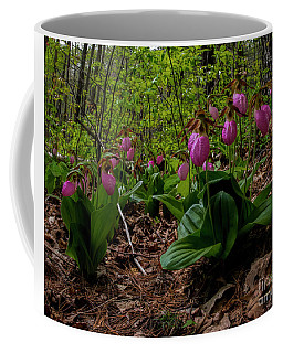 Pink Ladies Slipper Patch Coffee Mug by Barbara Bowen
