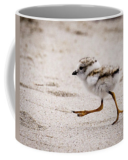 Piping Plover Chick Coffee Mug