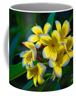 Coffee Mug featuring the photograph 1- Plumeria Perfection by Joseph Keane