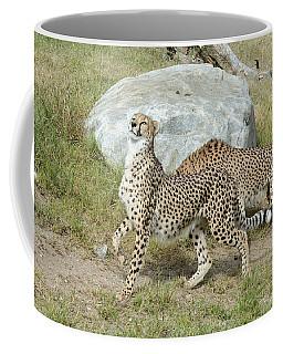 Coffee Mug featuring the photograph Poise by Fraida Gutovich
