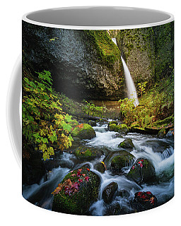 Coffee Mug featuring the photograph Ponytail Falls With Autumn Foliage by William Lee