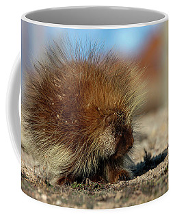 Coffee Mug featuring the photograph Porcupine by Ronnie and Frances Howard