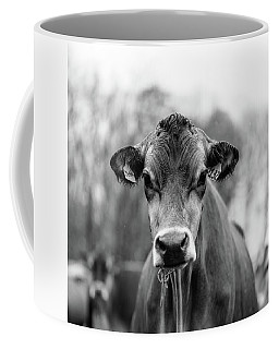 Portrait Of A Dairy Cow In The Rain Stowe Vermont Coffee Mug