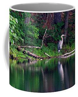 Posing Great Blue Heron  Coffee Mug