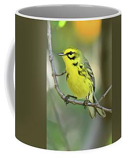 Prairie Warbler Coffee Mug by Alan Lenk