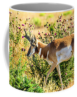 Pronghorn Antelope Coffee Mug