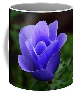 Coffee Mug featuring the photograph Purple Poppy by Cindy Manero