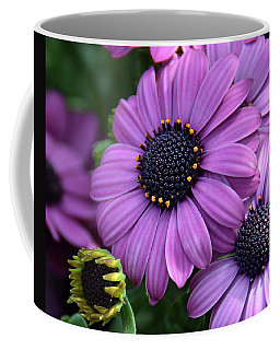 African Daisy Coffee Mug by Ronda Ryan