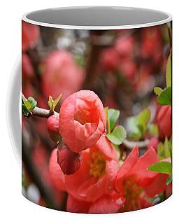 Quince Blossoms Coffee Mug