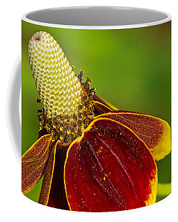 Ratibida Columnifera Coffee Mug