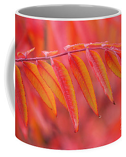 Coffee Mug featuring the photograph Red On Red by Mike Dawson