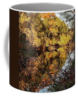 Reflections Of Trees Coffee Mug
