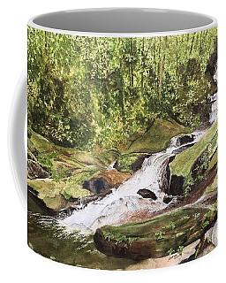 Roaring Fork Falls -- June 2017 Coffee Mug
