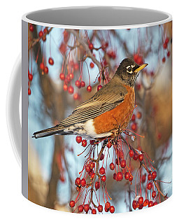 Coffee Mug featuring the photograph Robin.. by Nina Stavlund