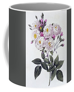 Rosa Noisettiana Coffee Mug