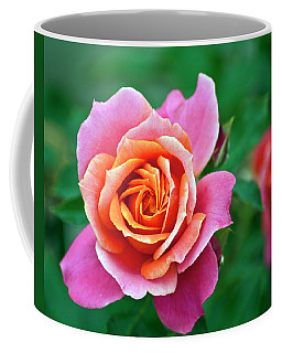 Coffee Mug featuring the photograph Rose by Bill Barber
