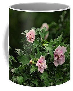 Rose Of Sharon Coffee Mug
