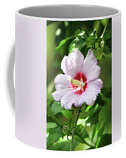 Coffee Mug featuring the photograph  Rose Of Sharon by Trina Ansel