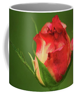Coffee Mug featuring the photograph Rosebud by Donna G Smith