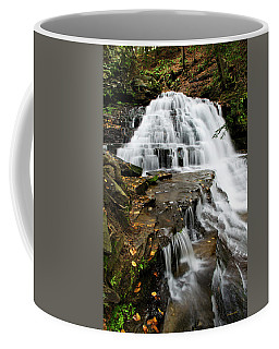 Coffee Mug featuring the photograph Salt Springs Waterfall by Christina Rollo