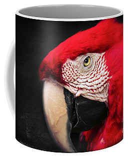 Scarlet Macaw - Ara Macao Coffee Mug
