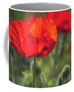 Scarlet Poppies Coffee Mug