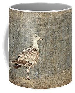 Seagull - Jersey Shore Coffee Mug
