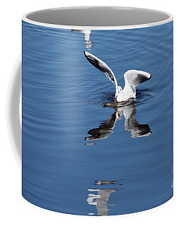 Coffee Mug featuring the photograph Seagull Fishing by Odon Czintos