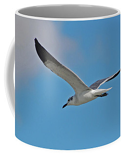 Coffee Mug featuring the photograph 1- Seagull by Joseph Keane