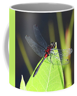 Seeing Red Coffee Mug