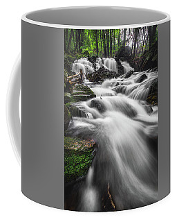 Senter Falls Coffee Mug