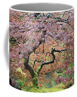 Coffee Mug featuring the photograph Shaded By Beauty by Brandy Little