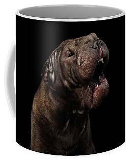 Sharpei Dog Isolated On Black Background Coffee Mug by Sergey Taran