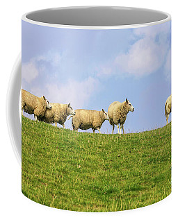 Coffee Mug featuring the photograph Sheep On Dyke by Patricia Hofmeester