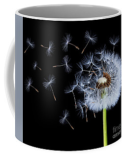 Silhouettes Of Dandelions Coffee Mug by Bess Hamiti