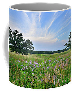 Silver Creek Conservation Area Sunset Coffee Mug
