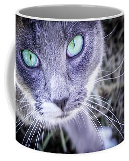 Skitty Cat Coffee Mug