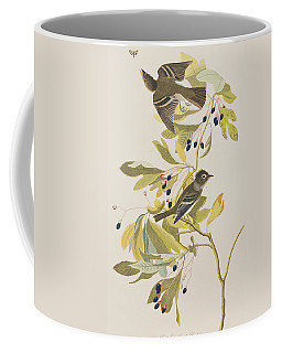 Small Green Crested Flycatcher Coffee Mug