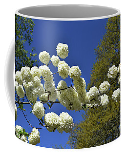 Coffee Mug featuring the photograph Snowballs by Skip Willits
