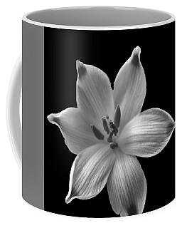 Snowdrop Coffee Mug by Keith Elliott