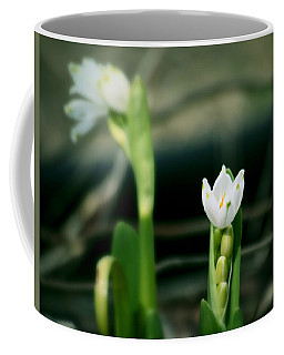 Coffee Mug featuring the photograph Snowdrops by Katie Wing Vigil
