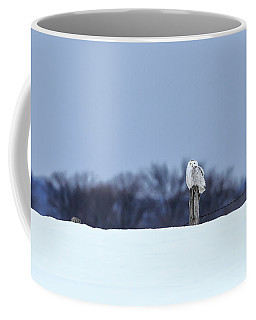 Coffee Mug featuring the photograph Snowy Owl 2 by Gary Hall