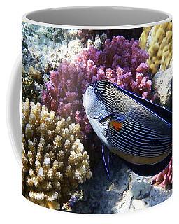 Sohal Surgeonfish Coffee Mug