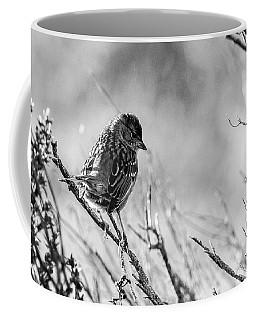 Snarky Sparrow, Black And White Coffee Mug