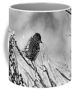 Snarky Sparrow, Black And White Coffee Mug