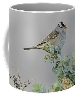 Sparrow Song Coffee Mug