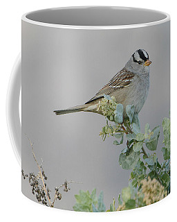 Sparrow Song Coffee Mug by Fraida Gutovich