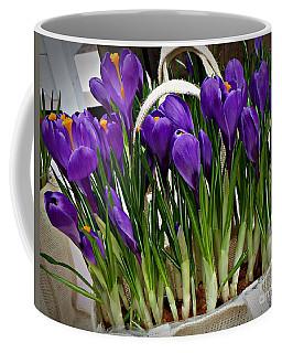 Coffee Mug featuring the photograph Spring Crocuses by AmaS Art