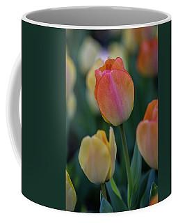 Spring Tulip Coffee Mug