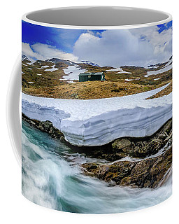 Coffee Mug featuring the photograph Spring Waters by Dmytro Korol